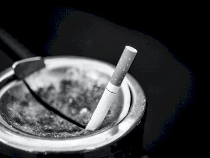 KPAI Minta Pemerintah Lindungi dan Penuhi Hak Kesehatan Anak dari Paparan Rokok
