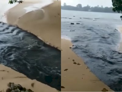 Duh! Tambak Udang di Carita Pandeglang Diduga Buang Limbah ke Laut, Banjir Kecaman Netizen