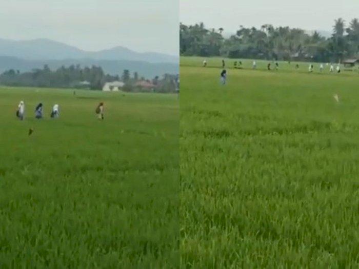 Gegara Takut Divaksin, Puluhan Siswa di Aceh Ini Kabur  ke Pematang Sawah