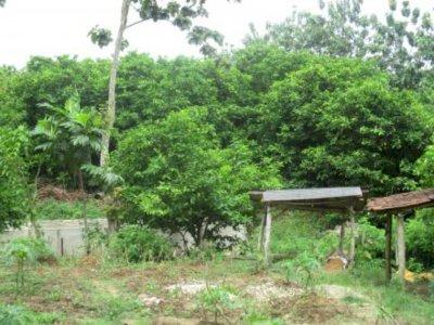 Mendes DTT Abdul Halim Iskandar Sebut Desa Nglobo  sebagai 'Texas-nya' Indonesia!