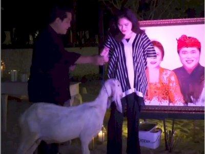 Kejutan Ultah Pernikahan ke-23, Erick Thohir Beri Kado Kambing Putih untuk Istri