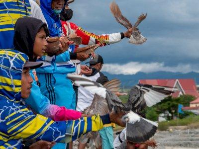 FOTO: Kontes Merpati Balap di Palu
