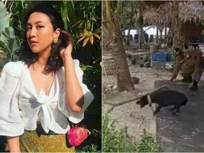 Sherina Kecewa ke Kasatpol PP Aceh Singkil yang Bantah Anjing Canon Mati karena Disiksa