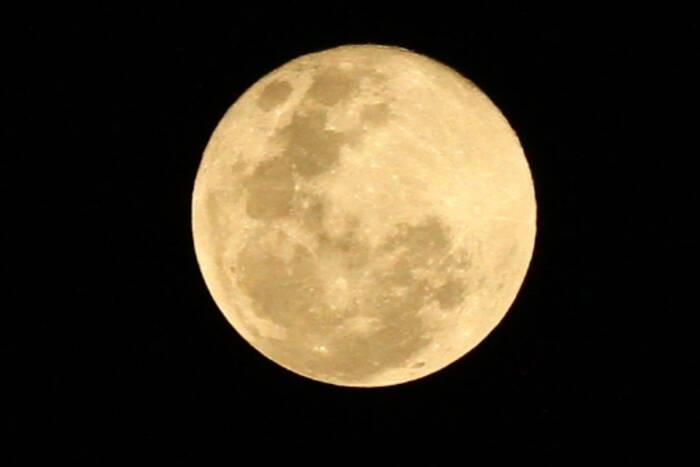 Fenomena bulan purnama merah muda (Supermoon pink moon) terlihat di Malang (ANTARA FOTO/Ari Bowo Sucipto)