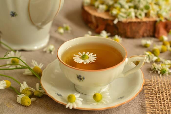 obat herbal sakit perut