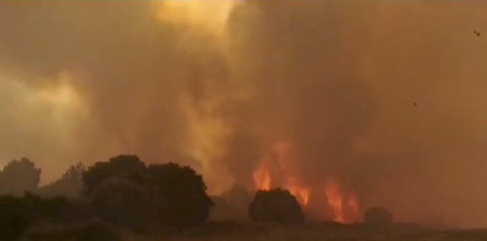 Asap mengepul dari kebakaran hutan di dekat Cuglieri